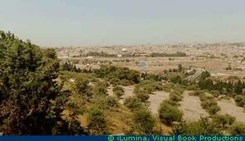 O monte das Oliveiras é um local importante em Jerusalém, ficando de frente a esplanada do Templo no Vale de Cedron, onde também aconteceram vários acontecimentos.